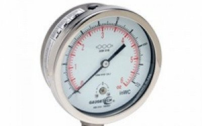 Stainless Steel Capsule Gauge